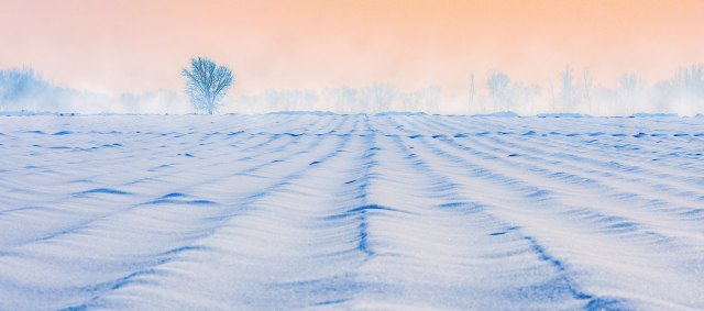 Winter-landscape.jpg